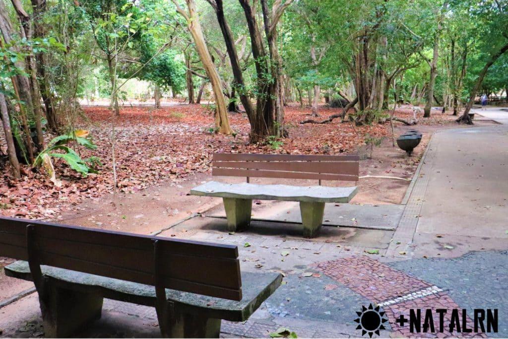 Ambiente com bancos para recreação e descanso no bosque dos namorados.